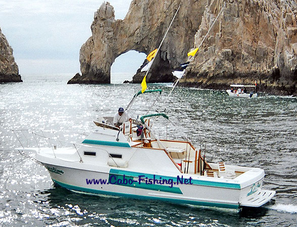 Los Cabos Fishing