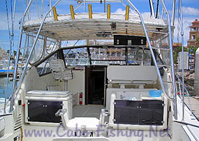 Deep Sea Fishing Trips Cabo