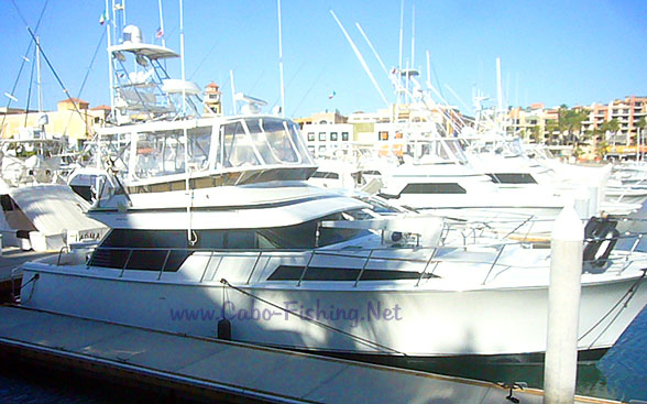 55' Mikelson Cabo San Lucas Fishing