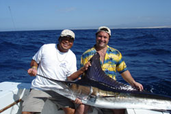 Cabo San Lucas Fly Fishing