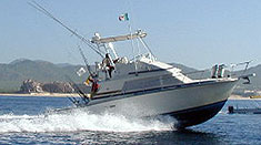 Cabo  Lucas Fishing on Cabo Fishing   Cabo San Lucas Fishing At It S Finest